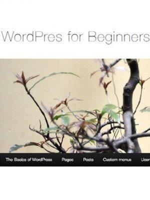 WordPress for Beginners – Easy as 1-2-3 – eBook