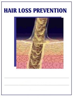 Hair Loss Prevention – eBook