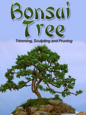 Bonsai Trees – eBook