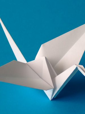 Origami – The Art of Paper Folding – eBook