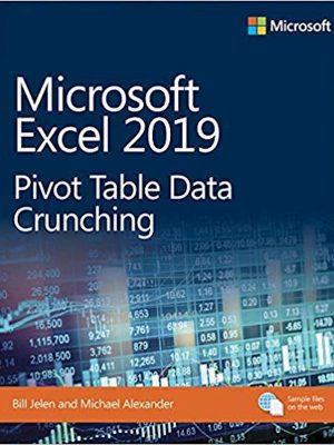 Microsoft Excel 2019 Pivot Table Data Crunching
