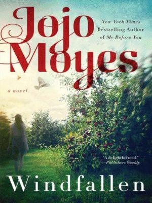 Windfallen – Jojo Moyes – eBook